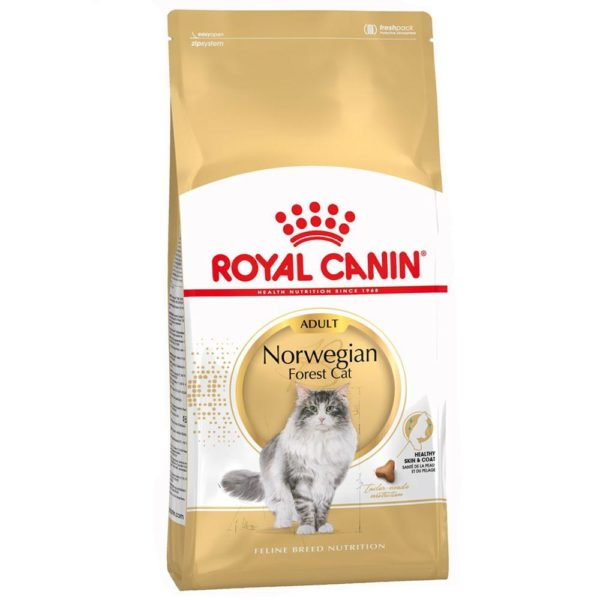 206786 1 royal canin norwegian forest c