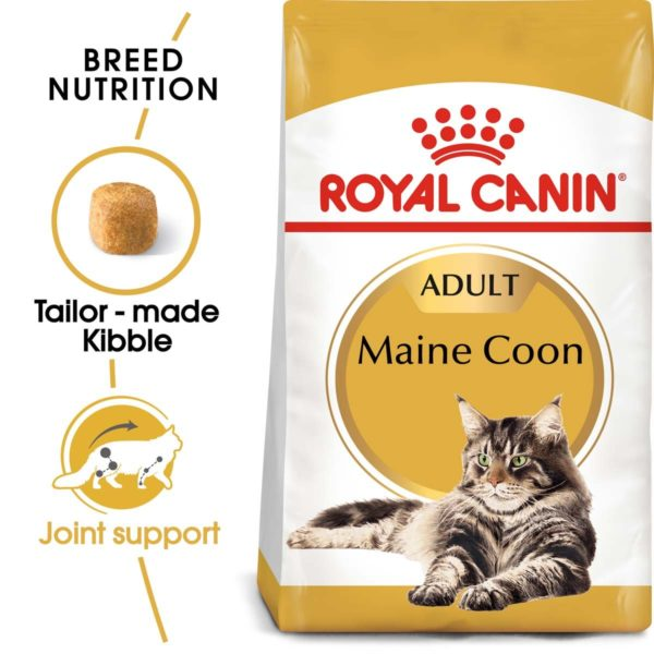 218364 1 royal canin maine coon adult k