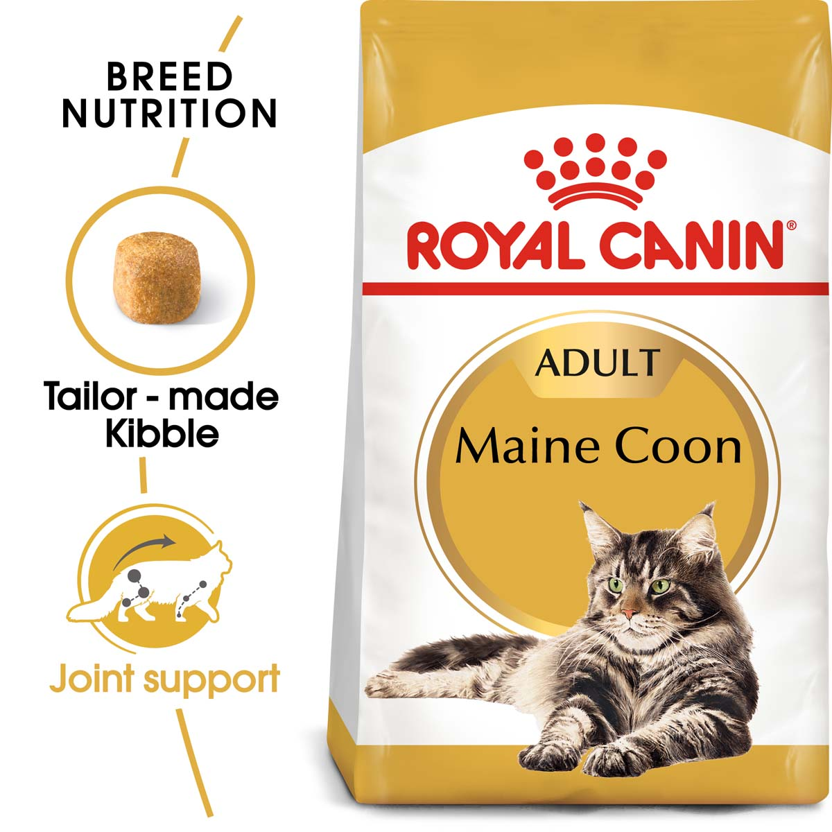 221313 1 royal canin maine coon adult k