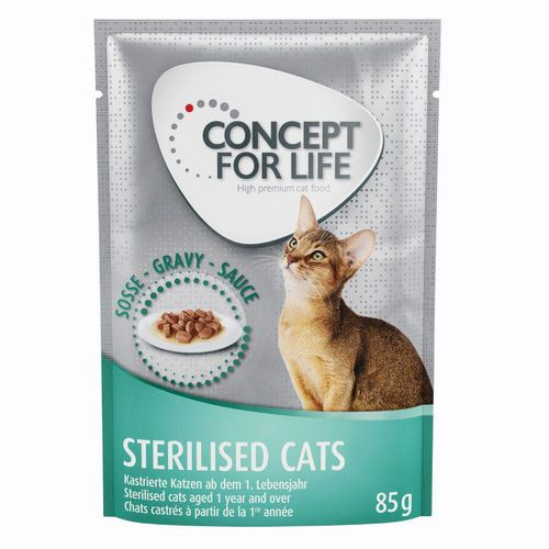 229550 1 concept for life all cats 10