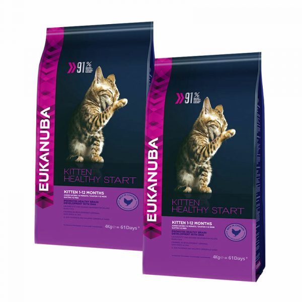 254927 1 eukanuba healthy start kitten